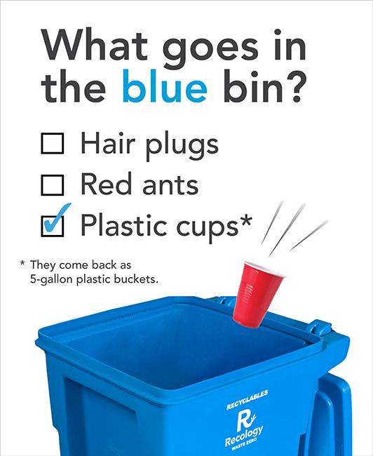 The Big Blue Bin